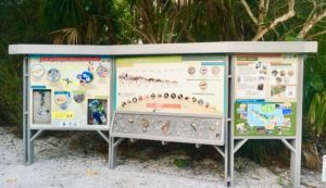 sanibel shell and wildlife ID board